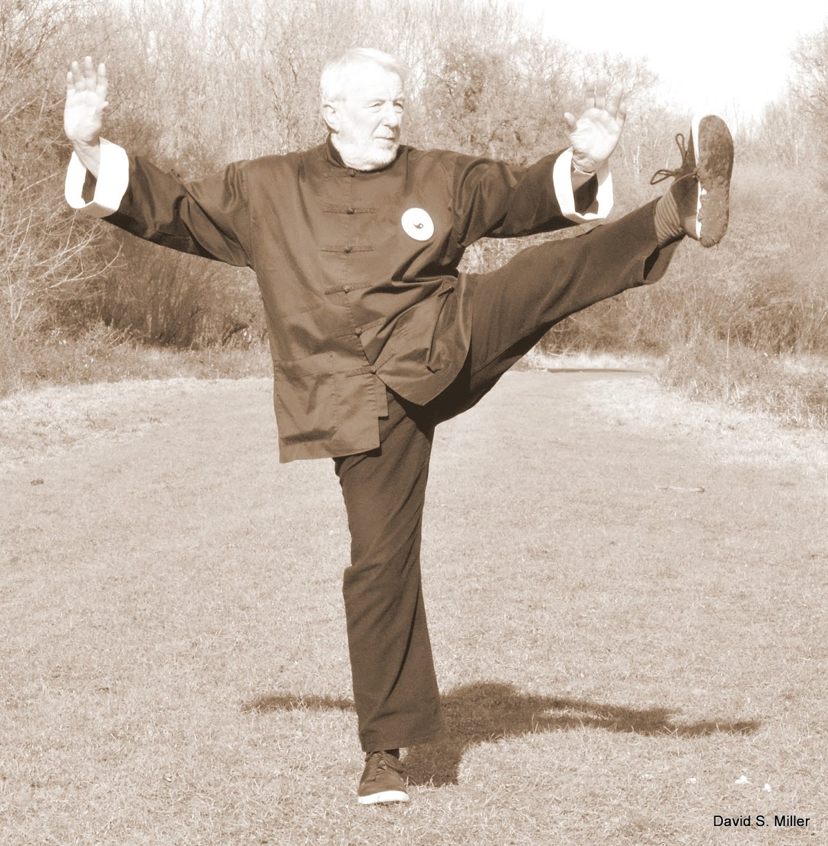 Shifu doing Power Kick to the Left